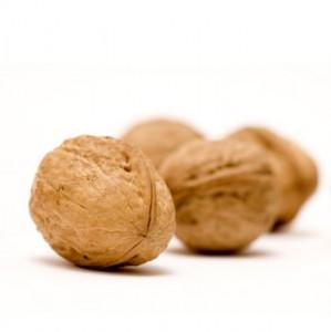 walnutscrop