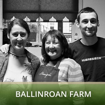 Ballinroan farm